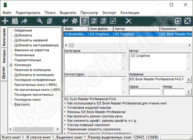 Программный интерфейс ICE Book Reader