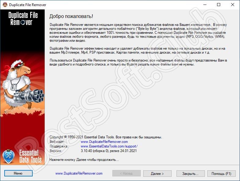 Программный интерфейс Duplicate File Remover
