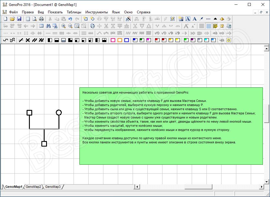 Пользовательский интерфейс GenoPro