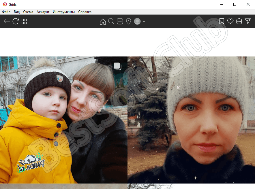 Пользовательский интерфейс программы Grids
